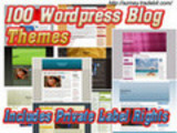 Thumbnail 100 WORDPRESS THEMES-plr