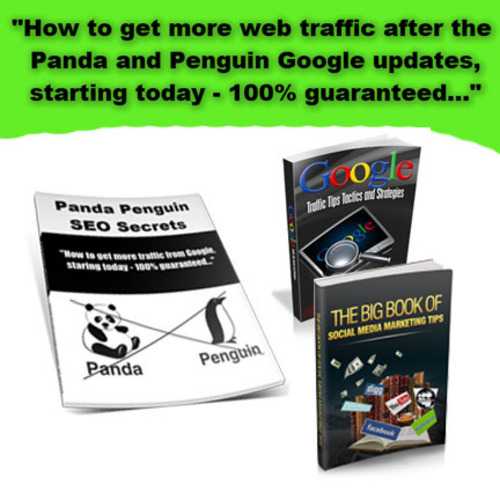 Product picture Traffic and Seo Strategies