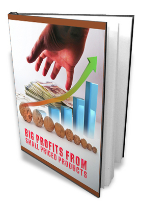 Product picture BIG PROFITS FROM SMALL SIZE PRODUCTS