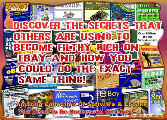 Product picture EBAY BUSINESS SUCCESS EBOOK PACKAGE